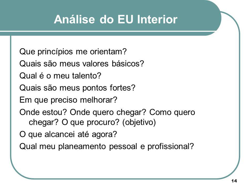 Análise do EU Interior Que princípios me orientam? Quais são meus valores básicos? Qual é o meu talento? Quais são meus pontos fortes? Em que preciso