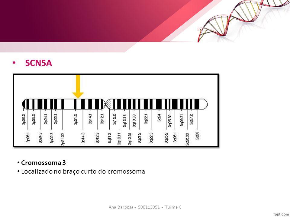 SCN5A Cromossoma 3 Localizado no braço curto do cromossoma Ana Barbosa - 500113051 - Turma C