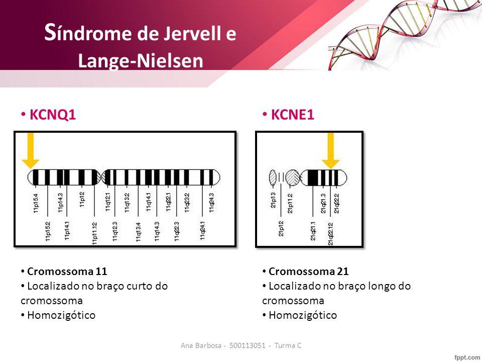 S índrome de Jervell e Lange-Nielsen KCNQ1 KCNE1 Cromossoma 11 Localizado no braço curto do cromossoma Homozigótico Cromossoma 21 Localizado no braço longo do cromossoma Homozigótico Ana Barbosa - 500113051 - Turma C