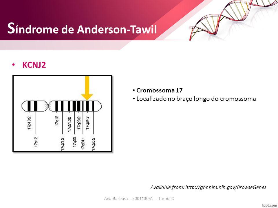 S índrome de Anderson-Tawil KCNJ2 Cromossoma 17 Localizado no braço longo do cromossoma Available from: http://ghr.nlm.nih.gov/BrowseGenes Ana Barbosa - 500113051 - Turma C