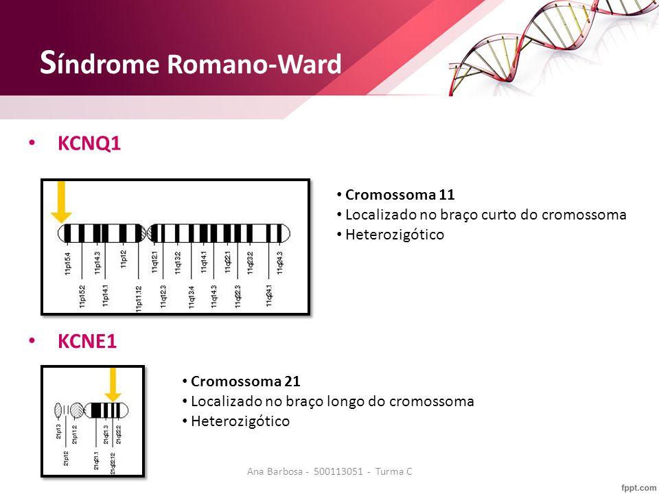 S índrome Romano-Ward KCNQ1 Cromossoma 11 Localizado no braço curto do cromossoma Heterozigótico KCNE1 Cromossoma 21 Localizado no braço longo do cromossoma Heterozigótico Ana Barbosa - 500113051 - Turma C