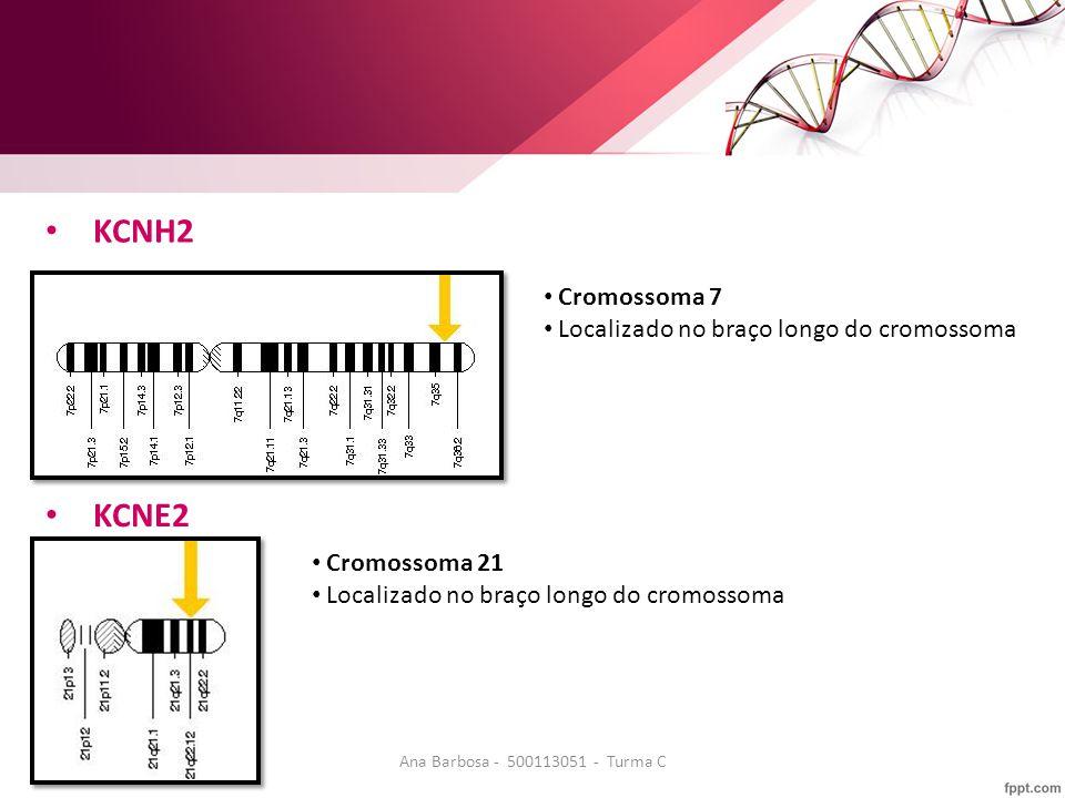 KCNH2 Cromossoma 7 Localizado no braço longo do cromossoma KCNE2 Cromossoma 21 Localizado no braço longo do cromossoma Ana Barbosa - 500113051 - Turma C