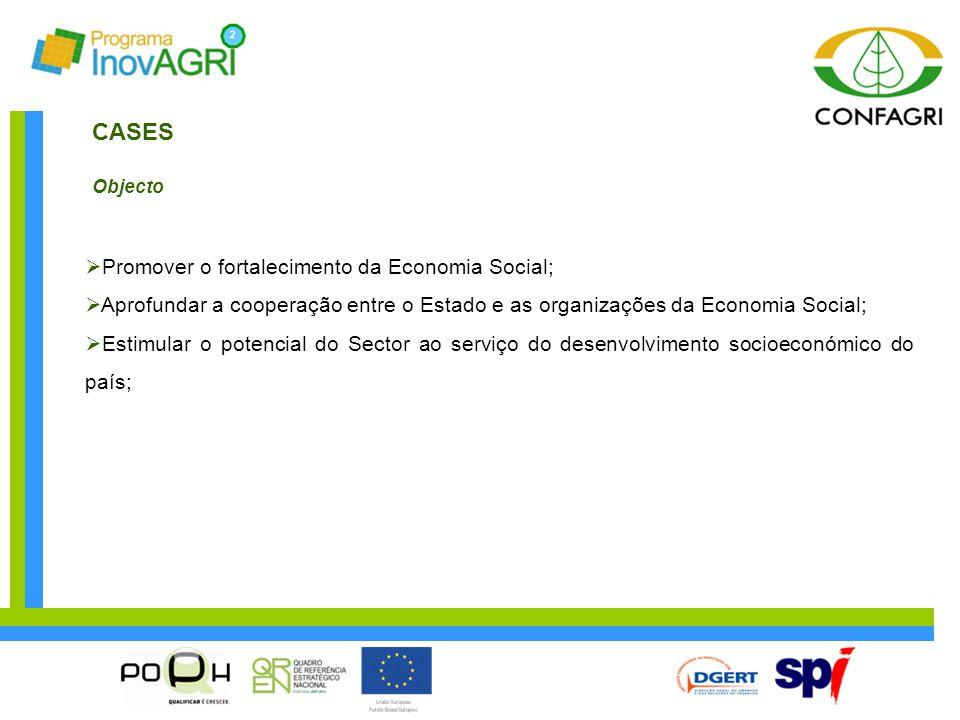 CASES Objecto  Promover o fortalecimento da Economia Social;  Aprofundar a cooperação entre o Estado e as organizações da Economia Social;  Estimul