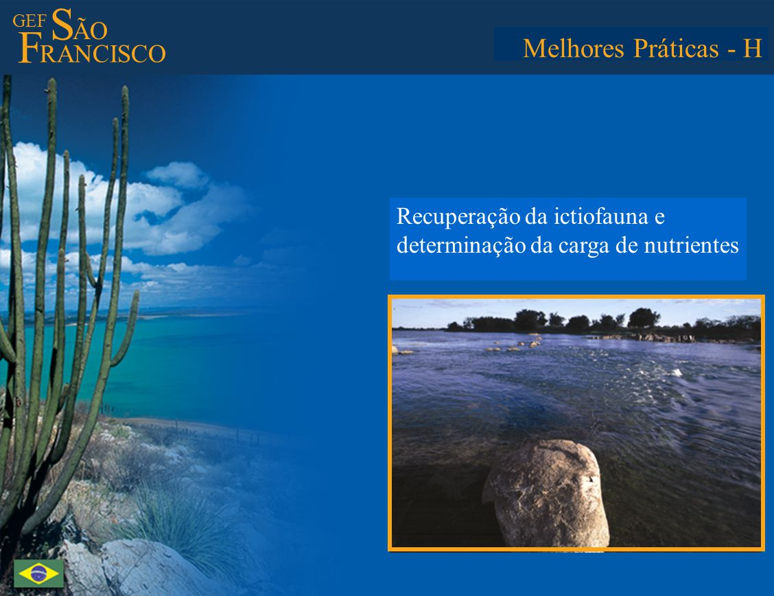 GEF S ÃO F RANCISCO Best Practices - H Restoration of the icthyofauna and determination of nutrient load in the water Melhores Práticas - H Recuperaçã