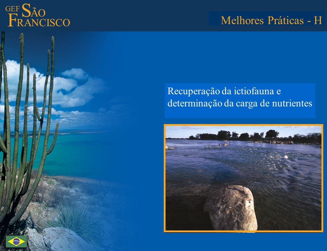 GEF S ÃO F RANCISCO Best Practices - H Restoration of the icthyofauna and determination of nutrient load in the water Melhores Práticas - H Recuperação da ictiofauna e determinação da carga de nutrientes
