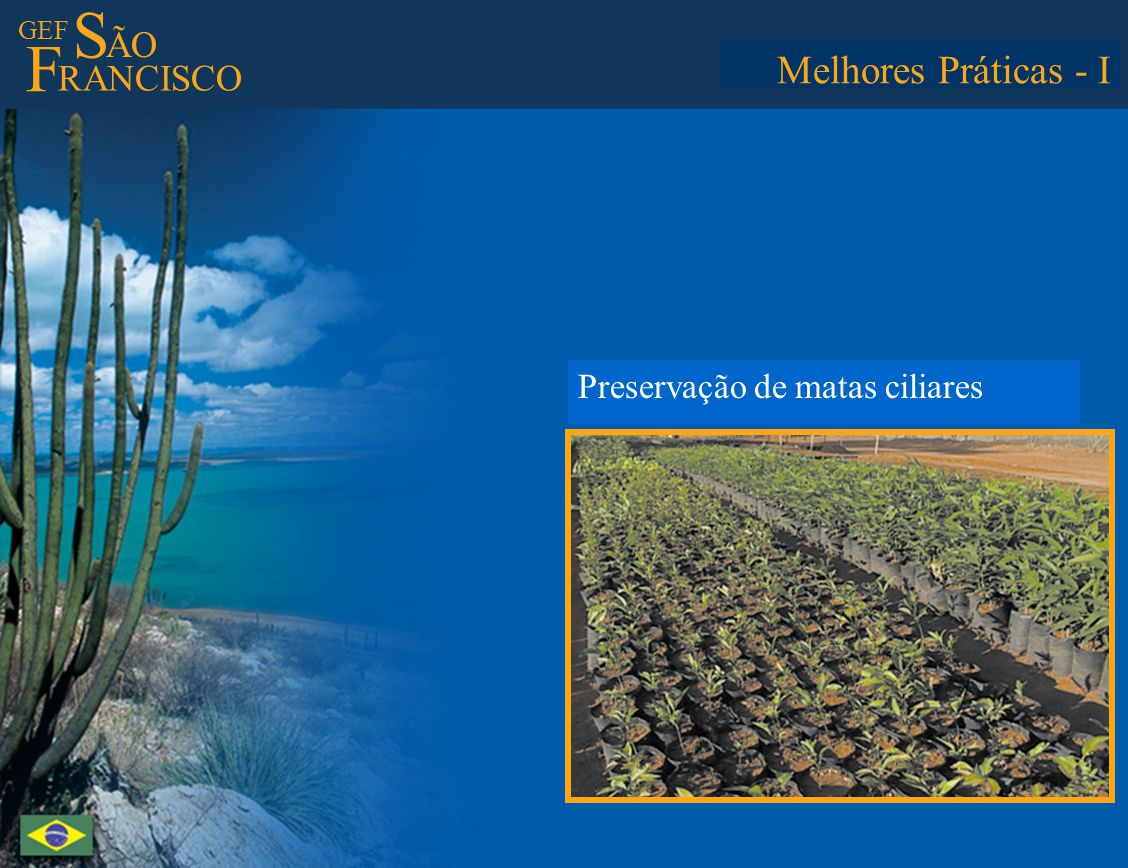 GEF S ÃO F RANCISCO Best Practices - I Preserving springs and riparian forests Melhores Práticas - I Preservação de matas ciliares