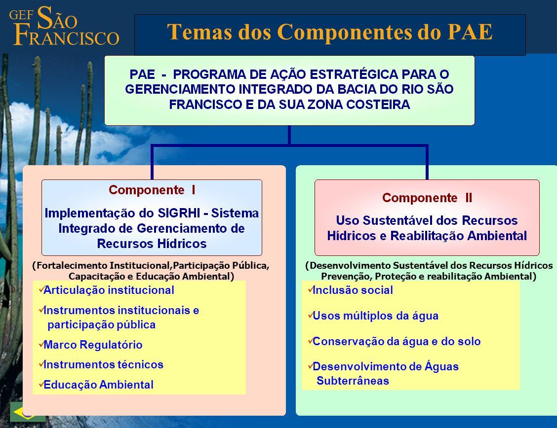 GEF S ÃO F RANCISCO Temas dos Componentes do PAE Articulação institucional Instrumentos institucionais e participação pública Marco Regulatório Instru