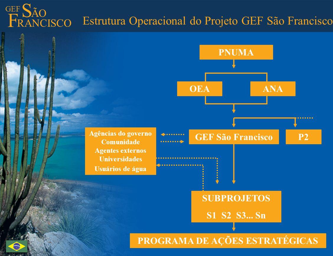 GEF S ÃO F RANCISCO Estrutura Operacional do Projeto GEF São Francisco P2GEF São Francisco SUBPROJETOS S1 S2 S3... Sn PROGRAMA DE AÇÕES ESTRATÉGICAS A