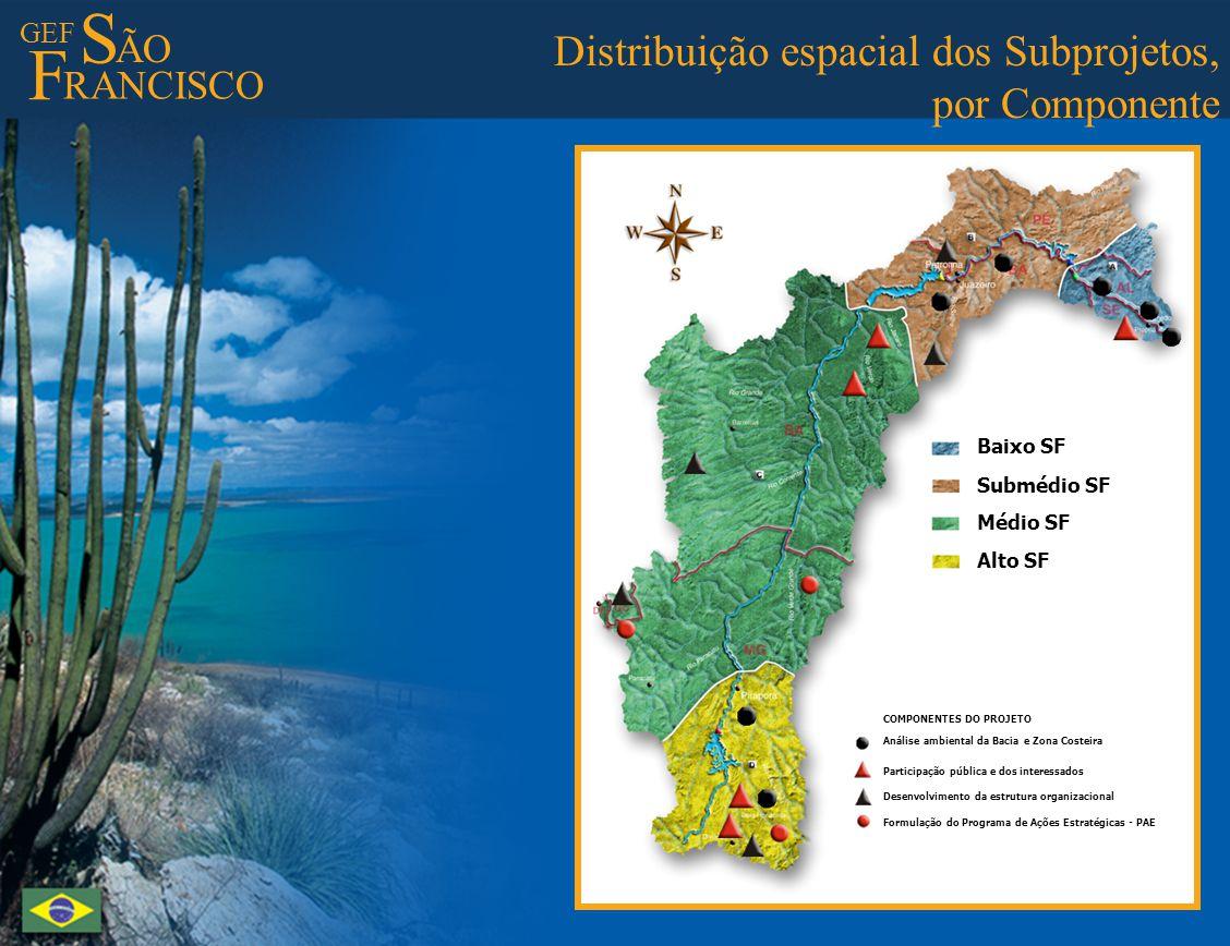 GEF S ÃO F RANCISCO Best Practices - I Preserving springs and riparian forests Melhores Práticas - I Preservação de matas ciliares