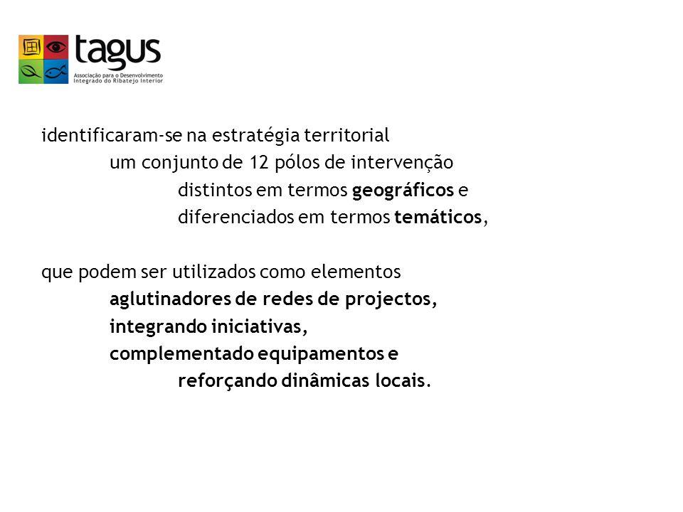 identificaram-se na estratégia territorial um conjunto de 12 pólos de intervenção distintos em termos geográficos e diferenciados em termos temáticos, que podem ser utilizados como elementos aglutinadores de redes de projectos, integrando iniciativas, complementado equipamentos e reforçando dinâmicas locais.