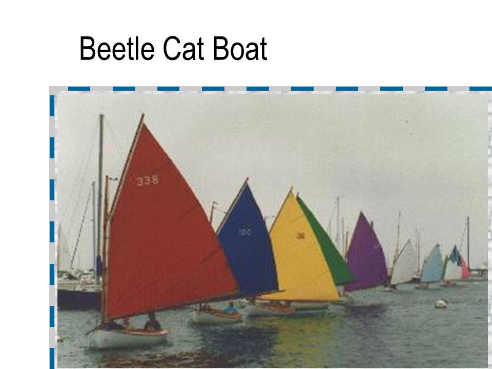 Beetle Cat Boat