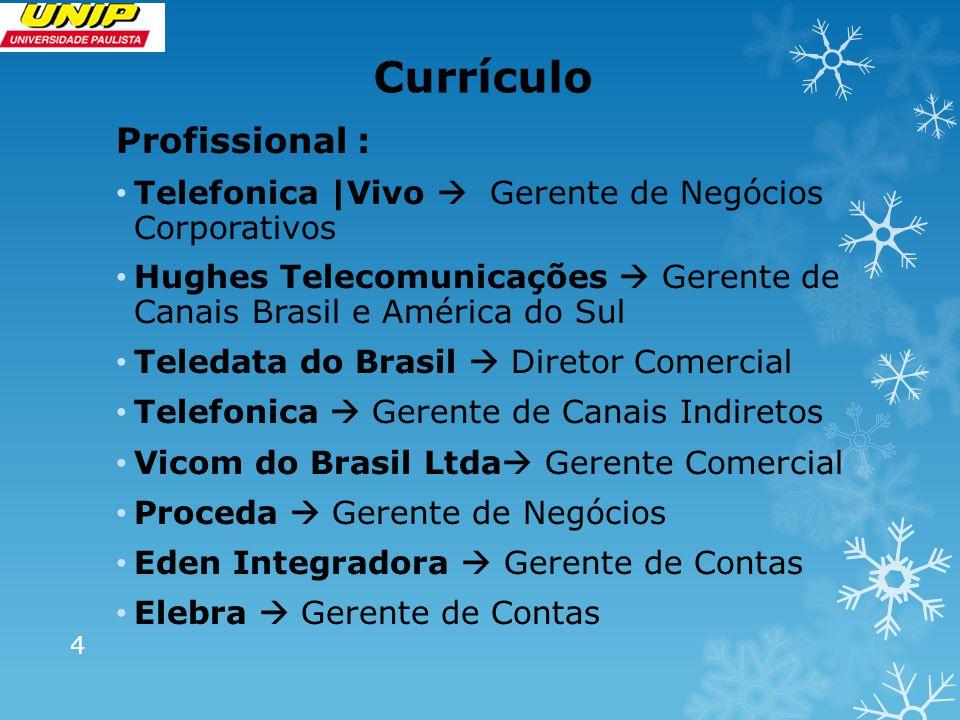 Currículo Profissional : Telefonica |Vivo  Gerente de Negócios Corporativos Hughes Telecomunicações  Gerente de Canais Brasil e América do Sul Teled
