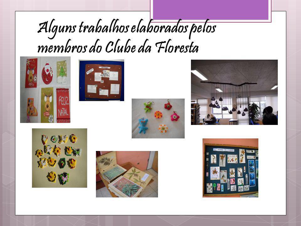 Alguns trabalhos elaborados pelos membros do Clube da Floresta