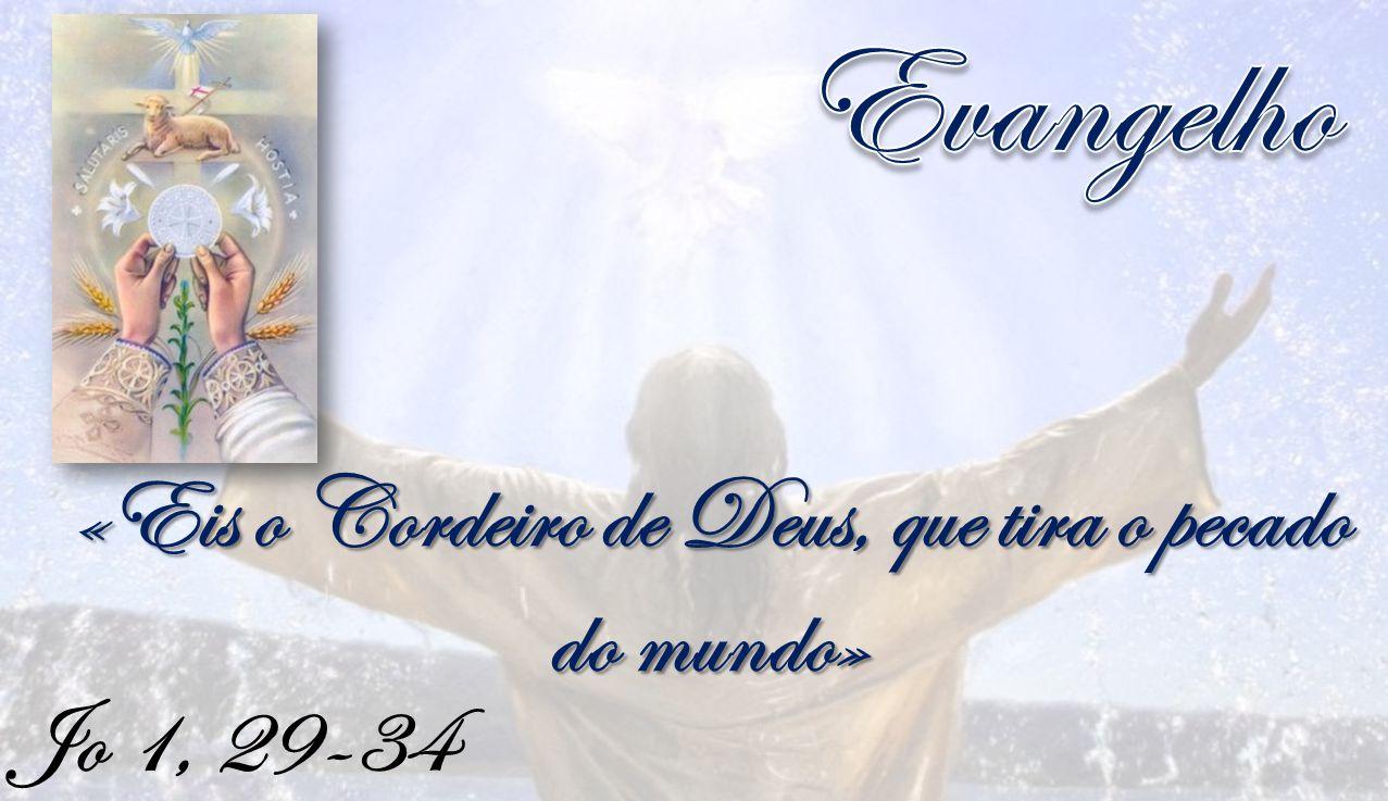 Jo 1, 29-34 «Eis o Cordeiro de Deus, que tira o pecado do mundo»
