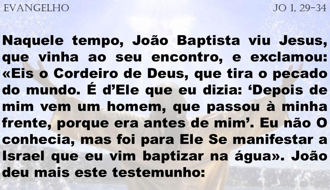 EVANGELHO Jo 1, 29-34 Naquele tempo, João Baptista viu Jesus, que vinha ao seu encontro, e exclamou: «Eis o Cordeiro de Deus, que tira o pecado do mun