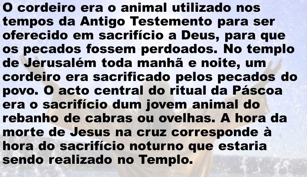O cordeiro era o animal utilizado nos tempos da Antigo Testemento para ser oferecido em sacrifício a Deus, para que os pecados fossem perdoados. No te