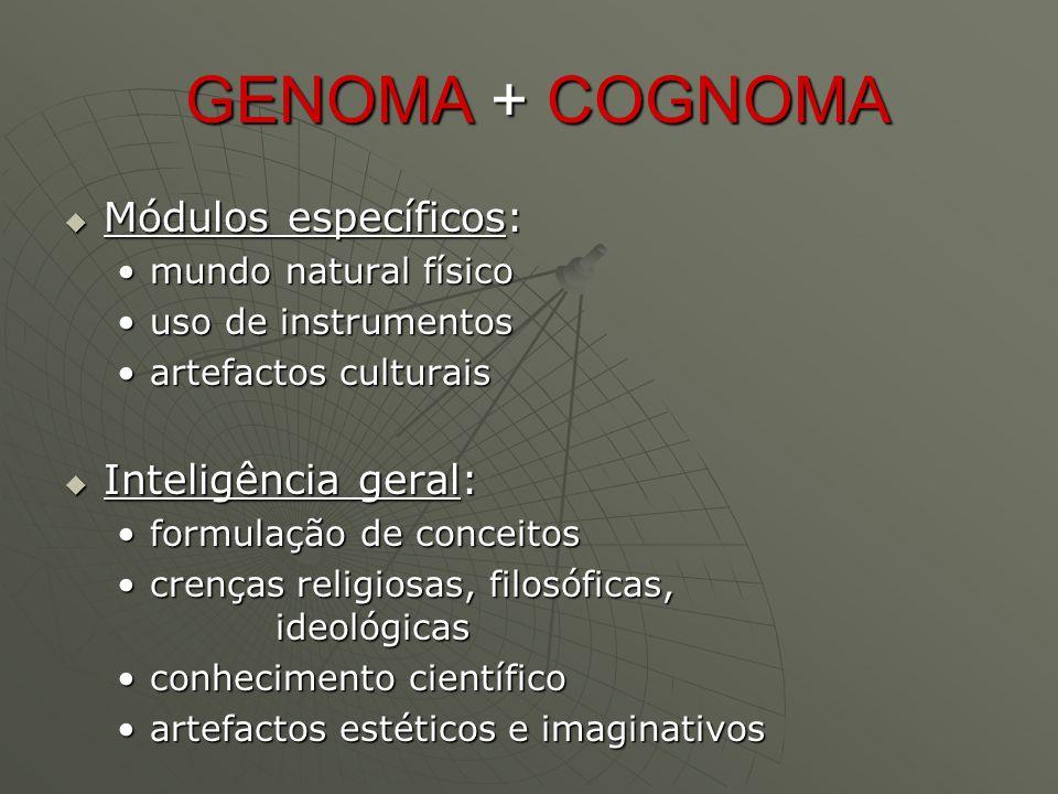Multimédia e Conteúdos Inteligentes  Conteúdos nacionais (com versões internacionais) multi-plataforma (p.ex.