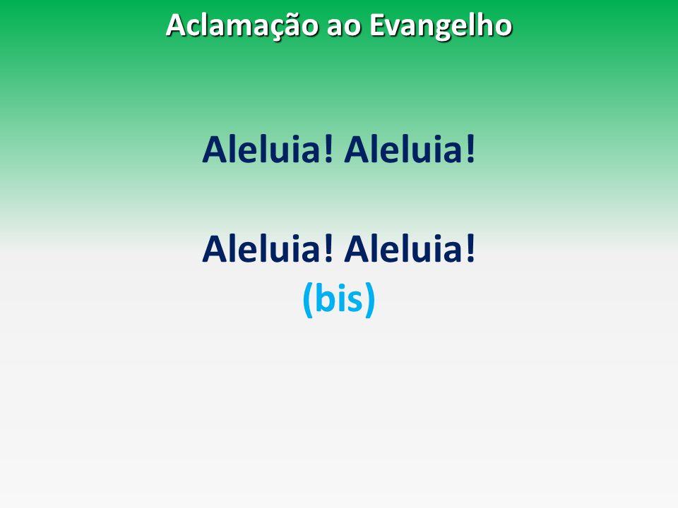 Aleluia! (bis) Aclamação ao Evangelho