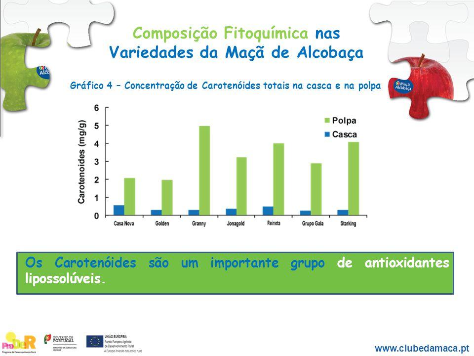 Composição Fitoquímica nas Variedades da Maçã de Alcobaça Os Carotenóides são um importante grupo de antioxidantes lipossolúveis. www.clubedamaca.pt G