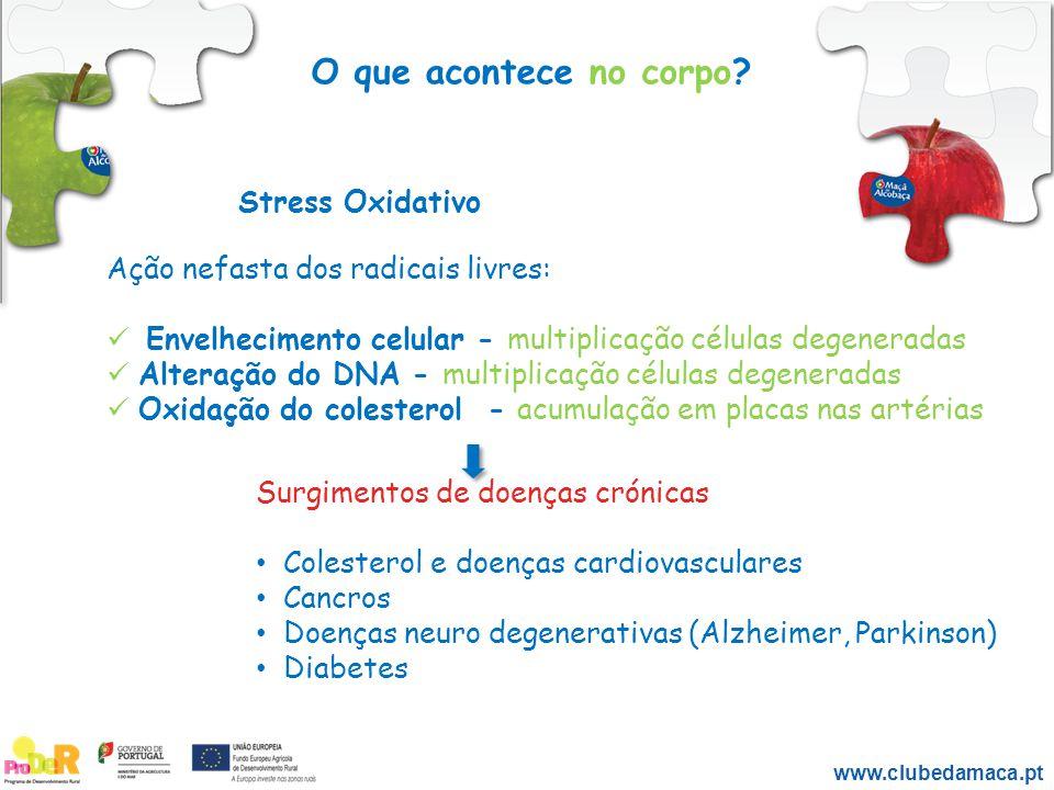 Stress Oxidativo Ação nefasta dos radicais livres: Envelhecimento celular - multiplicação células degeneradas Alteração do DNA - multiplicação células