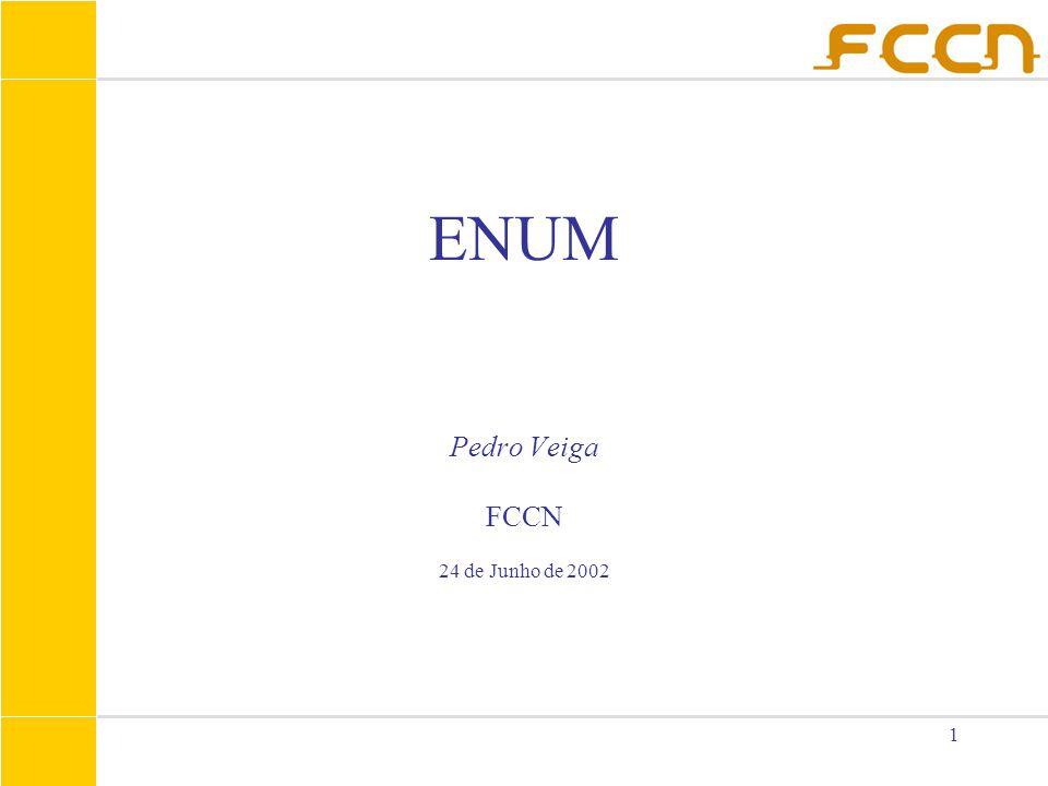 1 ENUM Pedro Veiga FCCN 24 de Junho de 2002