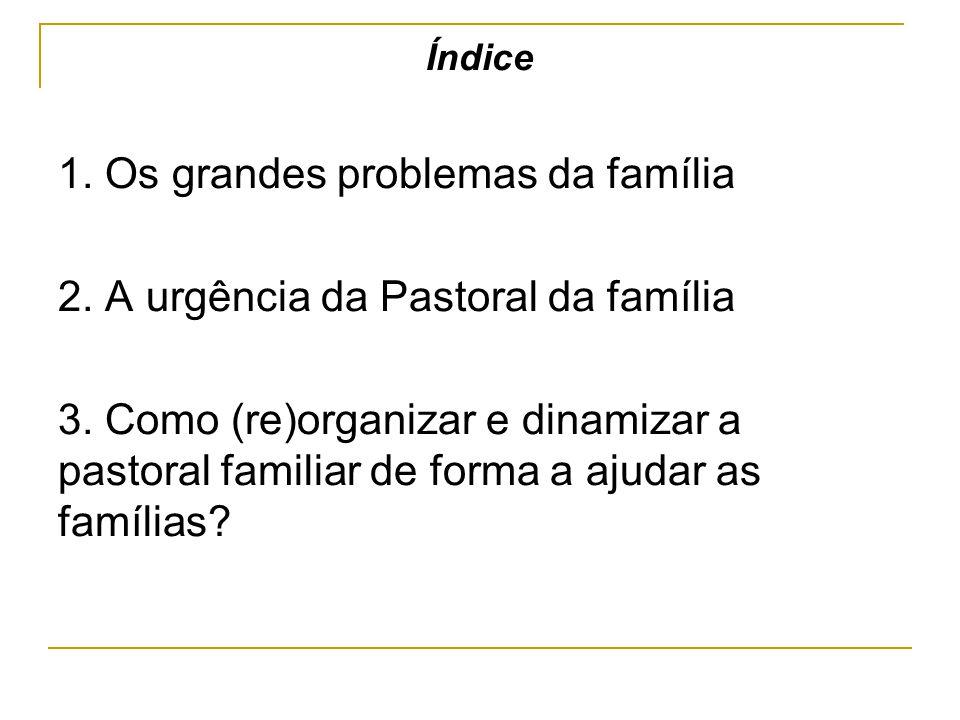 Índice 1. Os grandes problemas da família 2. A urgência da Pastoral da família 3. Como (re)organizar e dinamizar a pastoral familiar de forma a ajudar