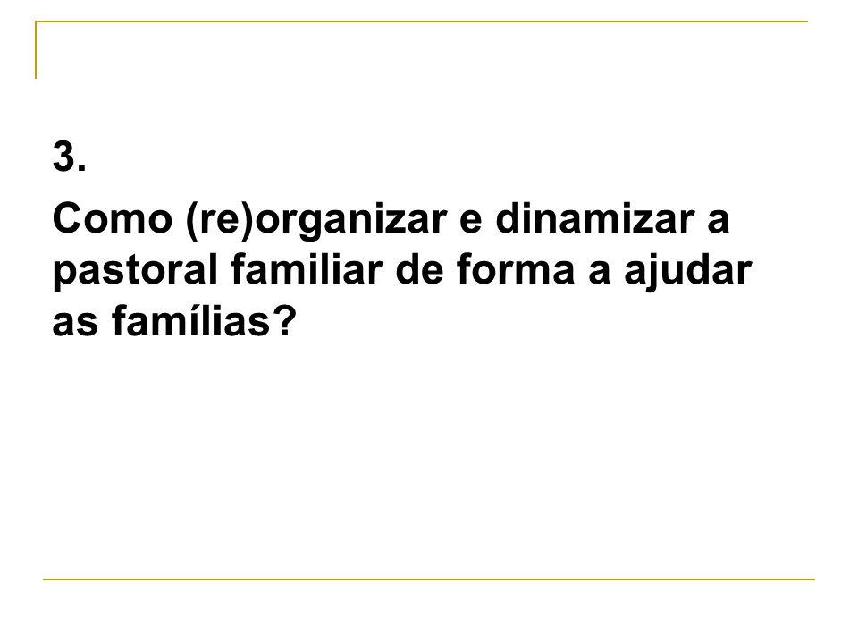 3. Como (re)organizar e dinamizar a pastoral familiar de forma a ajudar as famílias?