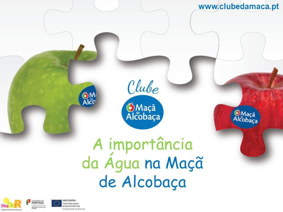A importância da Água na Maçã de Alcobaça www.clubedamaca.pt