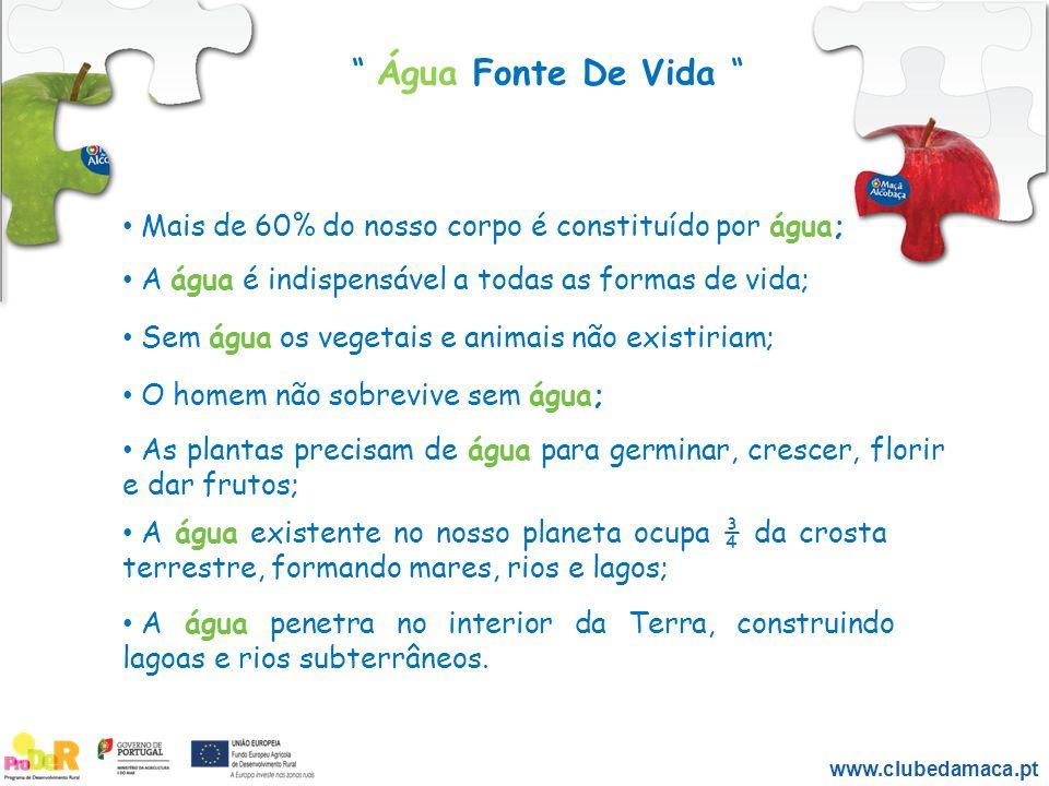 """"""" Água Fonte De Vida """" www.clubedamaca.pt Mais de 60% do nosso corpo é constituído por água; A água é indispensável a todas as formas de vida; Sem águ"""