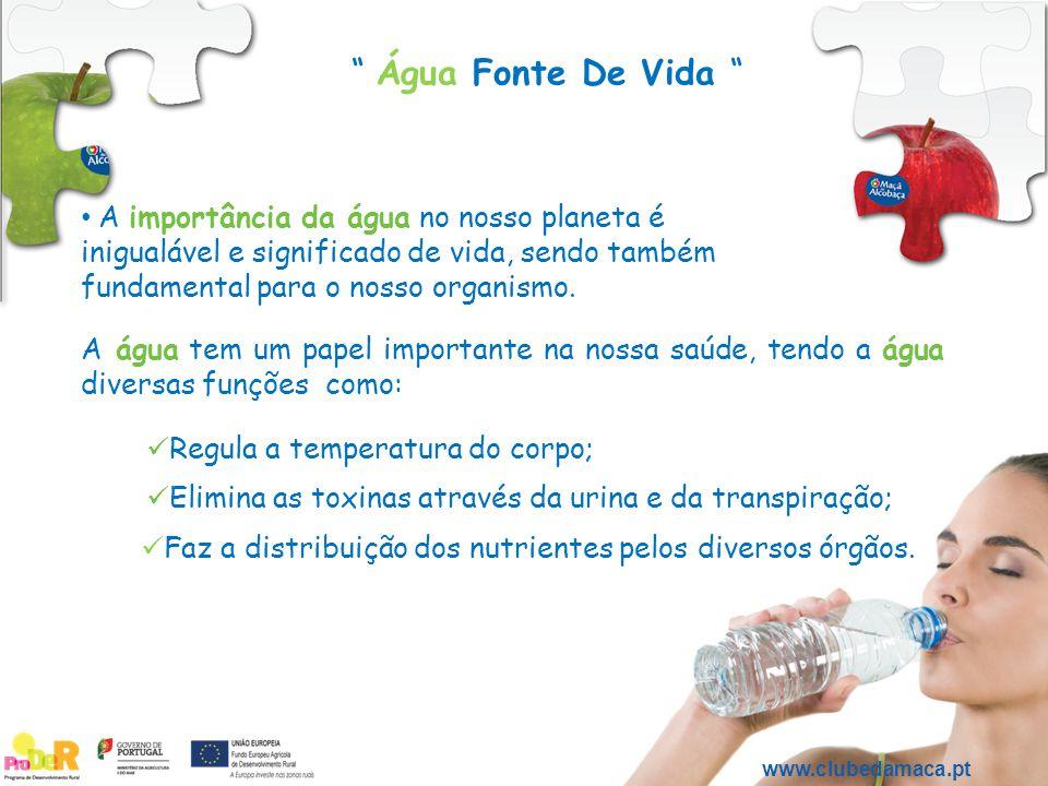 www.clubedamaca.pt A importância da água no nosso planeta é inigualável e significado de vida, sendo também fundamental para o nosso organismo. A água