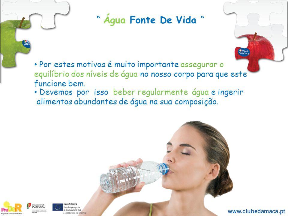 www.clubedamaca.pt Por estes motivos é muito importante assegurar o equilíbrio dos níveis de água no nosso corpo para que este funcione bem. Devemos p