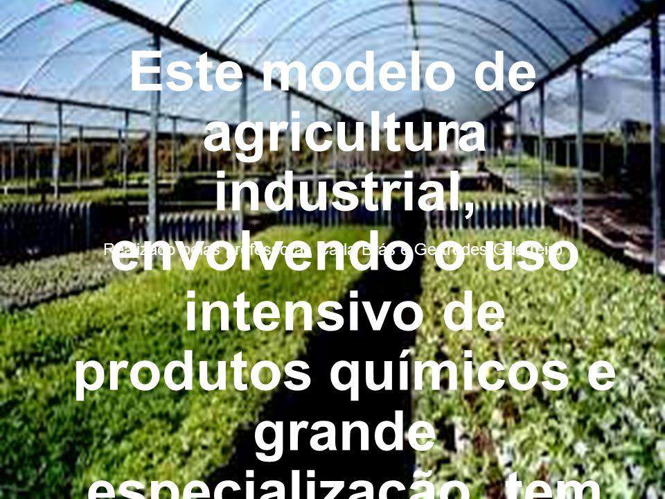 Este modelo de agricultura industrial, envolvendo o uso intensivo de produtos químicos e grande especialização, tem predominado na agricultura e produ