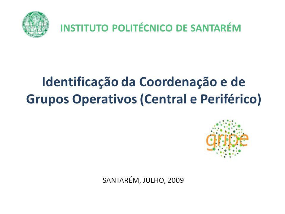 INSTITUTO POLITÉCNICO DE SANTARÉM Identificação da Coordenação e de Grupos Operativos (Central e Periférico) SANTARÉM, JULHO, 2009