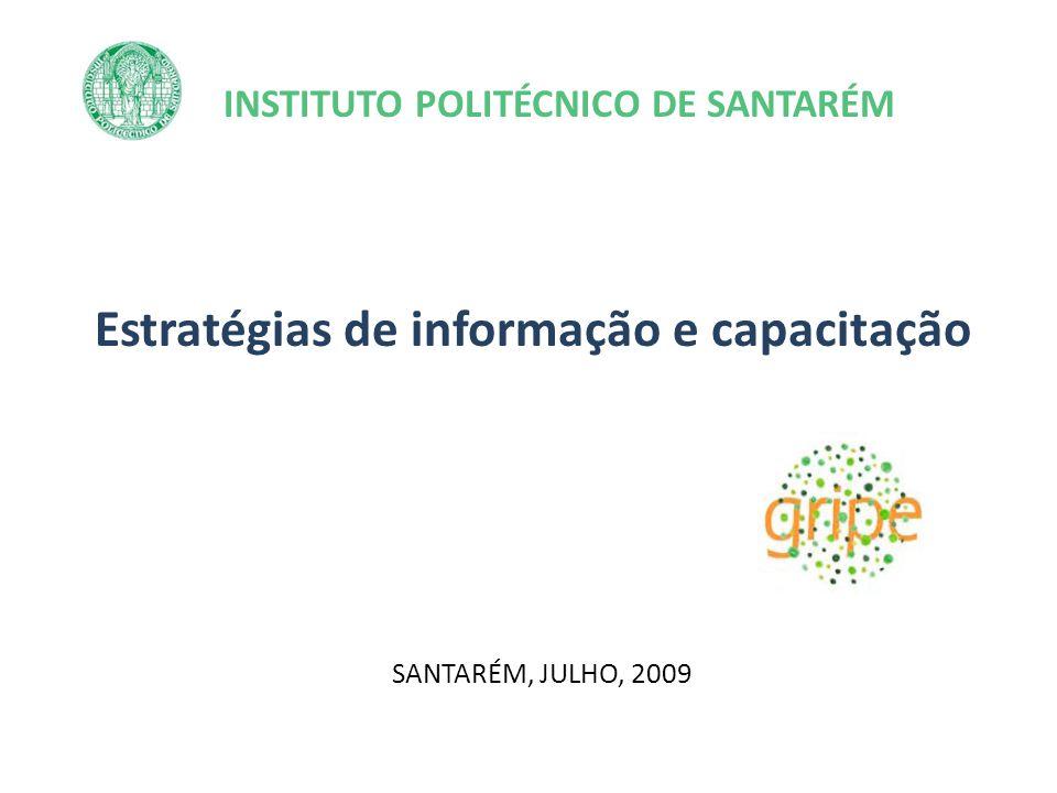 INSTITUTO POLITÉCNICO DE SANTARÉM Estratégias de informação e capacitação SANTARÉM, JULHO, 2009