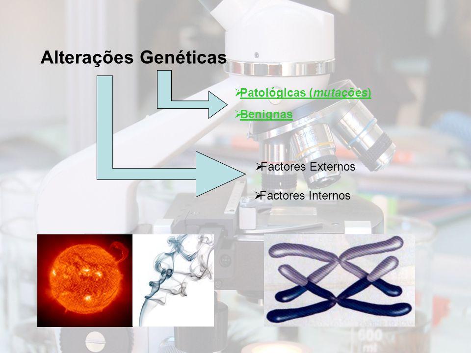 Genes associados a formas hereditárias de cancro da mama Síndroma Familiar (genes mutados) Tipo de Cancro/Penetrância em portadores de mutações Tipo de Hereditariedade Síndroma Mama/Ovário (BRCA 1-17q21.1) Cancro da mama – 85%Autossómica Dominante Cancro da Mama (BRCA 2-13q12-13) Cancro da mama – 85%Autossómica Dominante Muir-Torré (Variante de HNPCC) Autossómica Dominante Cowden (PTEN-10q22-23) Autossómica Dominante Peutz-Jeghers (STK11-19p13) Autossómica Dominante Ataxia telangiectasia (ATM-11q22-23) Autossómica Recessiva Li-Sraumeni (TP53-17p13.1) Autossómica dominante