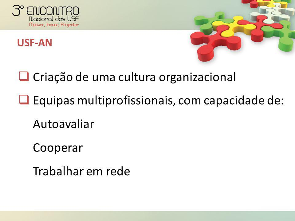 Criação de uma cultura organizacional  Equipas multiprofissionais, com capacidade de: Autoavaliar Cooperar Trabalhar em rede USF-AN