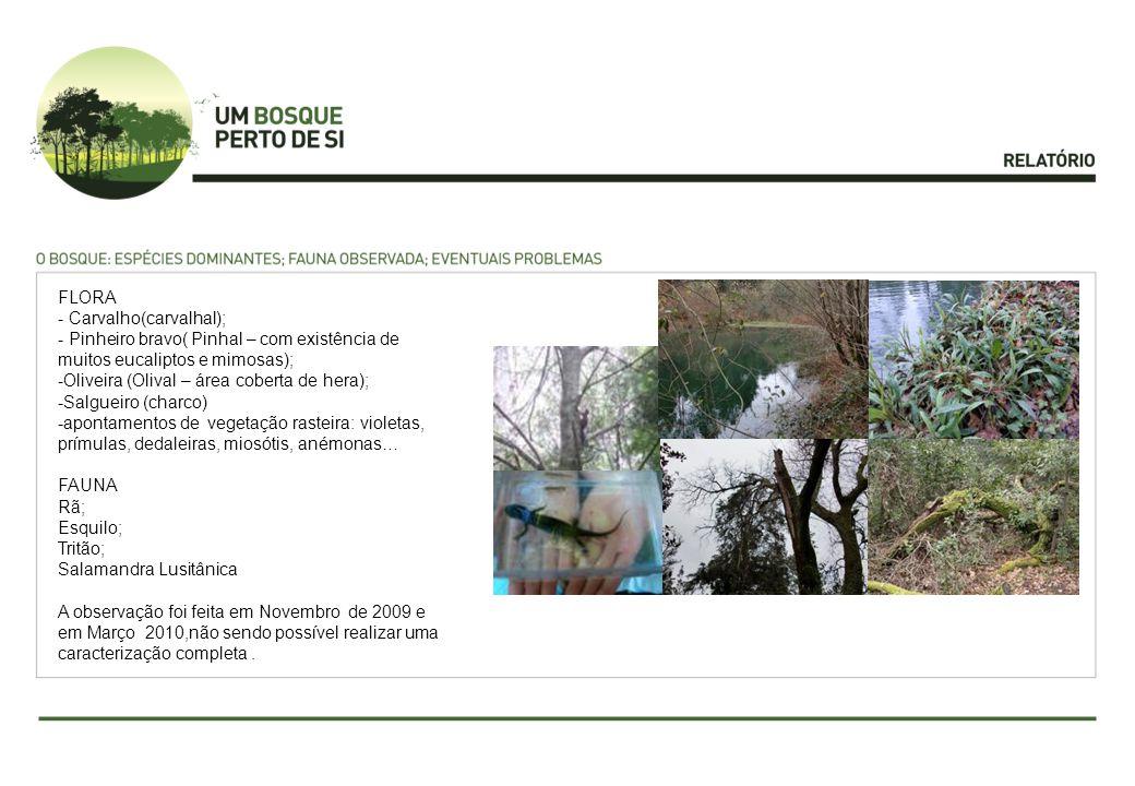 FLORA - Carvalho(carvalhal); - Pinheiro bravo( Pinhal – com existência de muitos eucaliptos e mimosas); -Oliveira (Olival – área coberta de hera); -Salgueiro (charco) -apontamentos de vegetação rasteira: violetas, prímulas, dedaleiras, miosótis, anémonas… FAUNA Rã; Esquilo; Tritão; Salamandra Lusitânica A observação foi feita em Novembro de 2009 e em Março 2010,não sendo possível realizar uma caracterização completa.