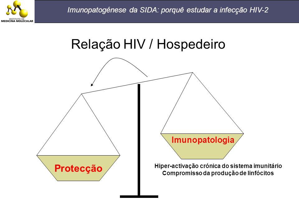 Imunopatogénese da SIDA: porquê estudar a infecção HIV-2 Protecção Imunopatologia Hiper-activação crónica do sistema imunitário Compromisso da produçã