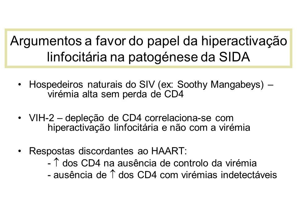 Argumentos a favor do papel da hiperactivação linfocitária na patogénese da SIDA Hospedeiros naturais do SIV (ex: Soothy Mangabeys) – virémia alta sem