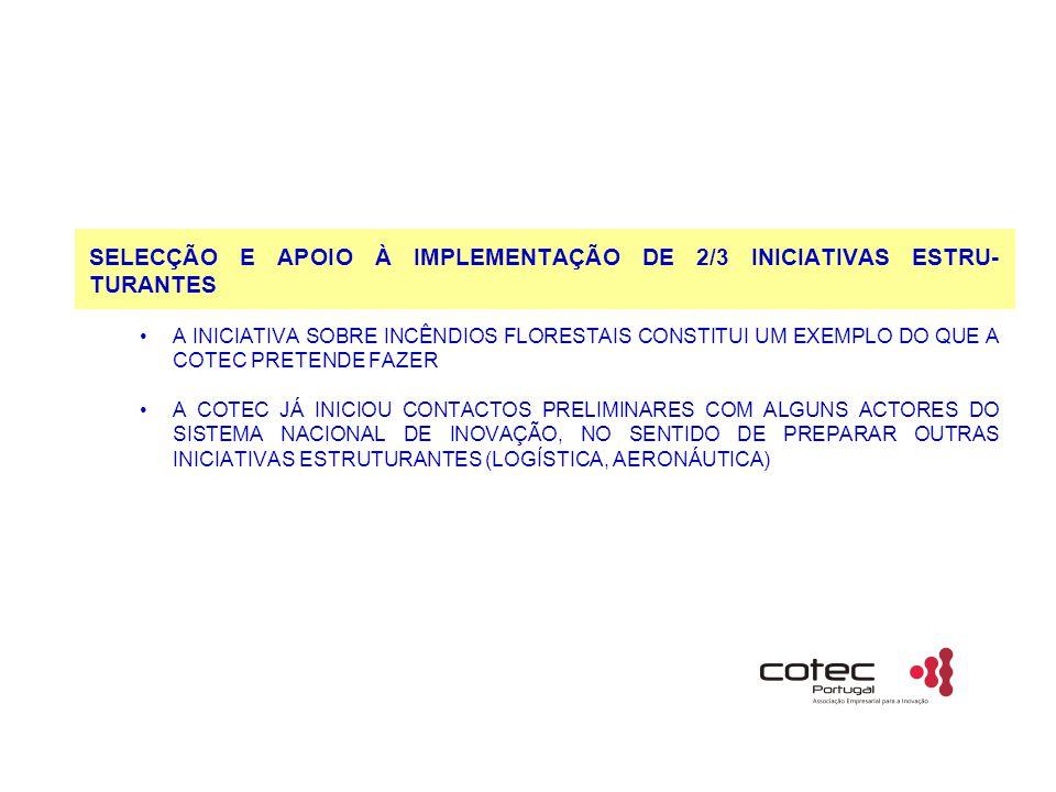 SELECÇÃO E APOIO À IMPLEMENTAÇÃO DE 2/3 INICIATIVAS ESTRU- TURANTES A INICIATIVA SOBRE INCÊNDIOS FLORESTAIS CONSTITUI UM EXEMPLO DO QUE A COTEC PRETENDE FAZER A COTEC JÁ INICIOU CONTACTOS PRELIMINARES COM ALGUNS ACTORES DO SISTEMA NACIONAL DE INOVAÇÃO, NO SENTIDO DE PREPARAR OUTRAS INICIATIVAS ESTRUTURANTES (LOGÍSTICA, AERONÁUTICA)