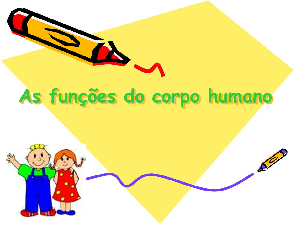 As funções do corpo humano