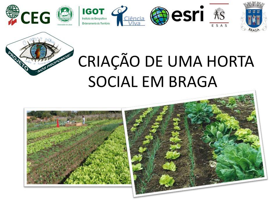CRIAÇÃO DE UMA HORTA SOCIAL EM BRAGA