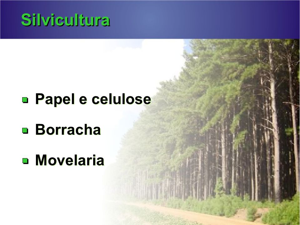 Silvicultura Papel e celulose Borracha Movelaria Papel e celulose Borracha Movelaria