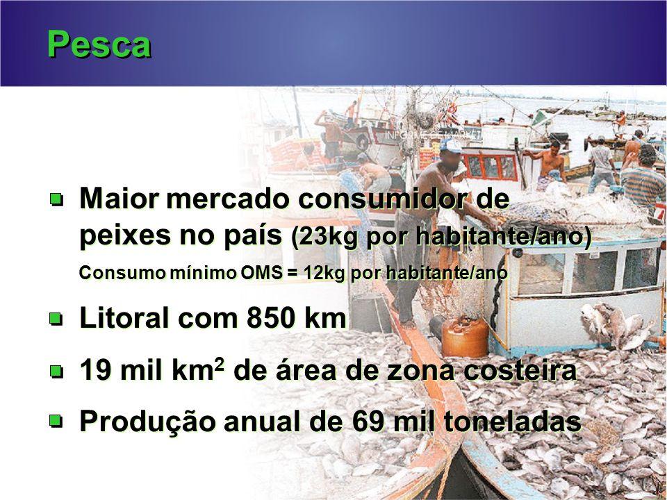 Pesca Maior mercado consumidor de peixes no país (23kg por habitante/ano) Consumo mínimo OMS = 12kg por habitante/ano Litoral com 850 km 19 mil km 2 de área de zona costeira Produção anual de 69 mil toneladas Maior mercado consumidor de peixes no país (23kg por habitante/ano) Consumo mínimo OMS = 12kg por habitante/ano Litoral com 850 km 19 mil km 2 de área de zona costeira Produção anual de 69 mil toneladas