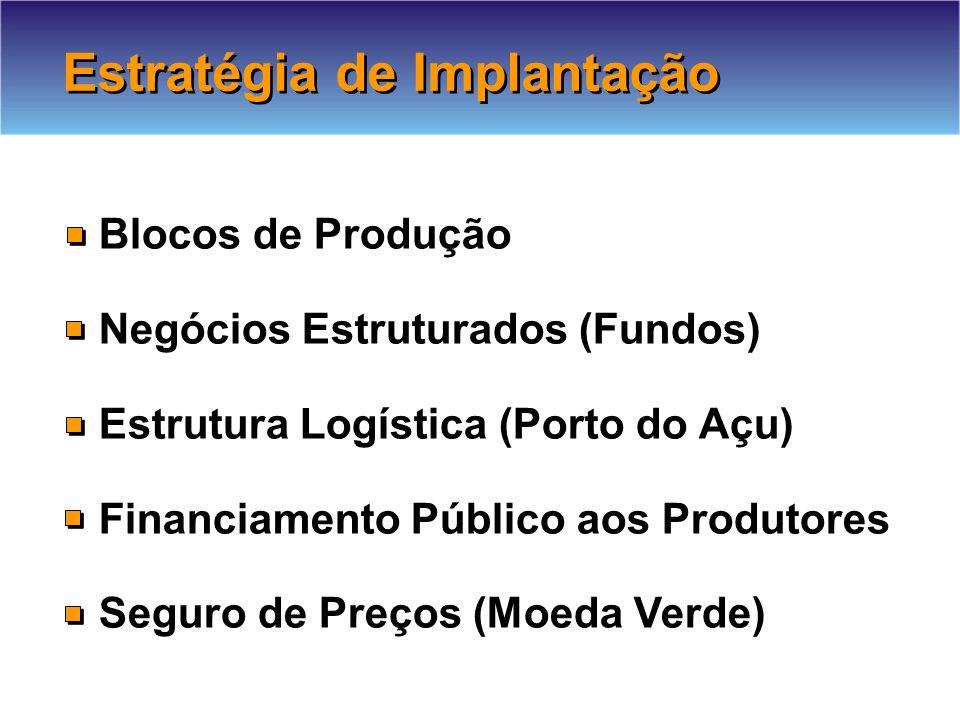 Blocos de Produção Negócios Estruturados (Fundos) Estrutura Logística (Porto do Açu) Financiamento Público aos Produtores Seguro de Preços (Moeda Verde) Estratégia de Implantação