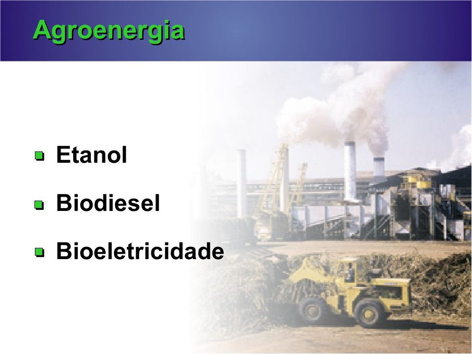 Agroenergia Etanol Biodiesel Bioeletricidade
