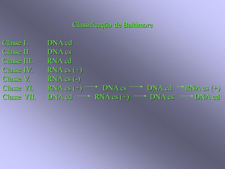 Classificação de Baltimore Classe I. DNA cd Classe II.