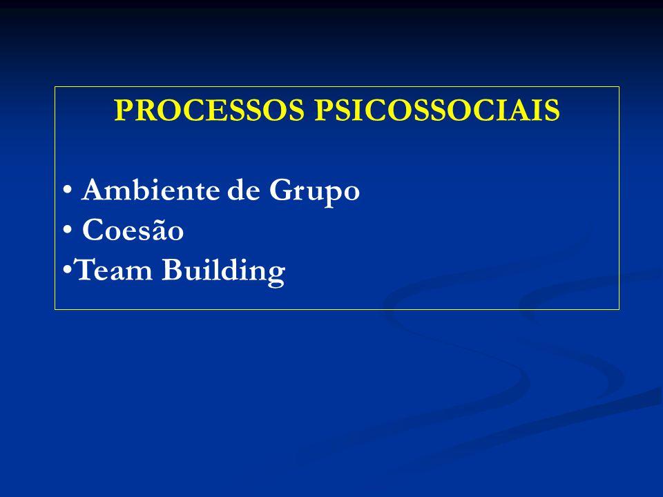 PROCESSOS PSICOSSOCIAIS Ambiente de Grupo Coesão Team Building