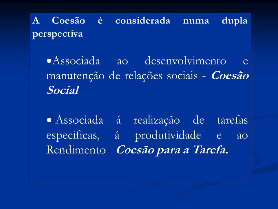 A Coesão é considerada numa dupla perspectiva  Associada ao desenvolvimento e manutenção de relações sociais - Coesão Social  Associada á realização