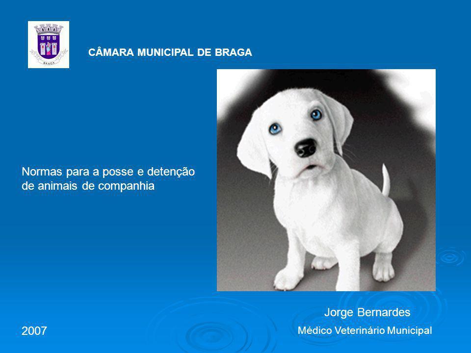 CÂMARA MUNICIPAL DE BRAGA Jorge Bernardes Médico Veterinário Municipal Normas para a posse e detenção de animais de companhia 2007